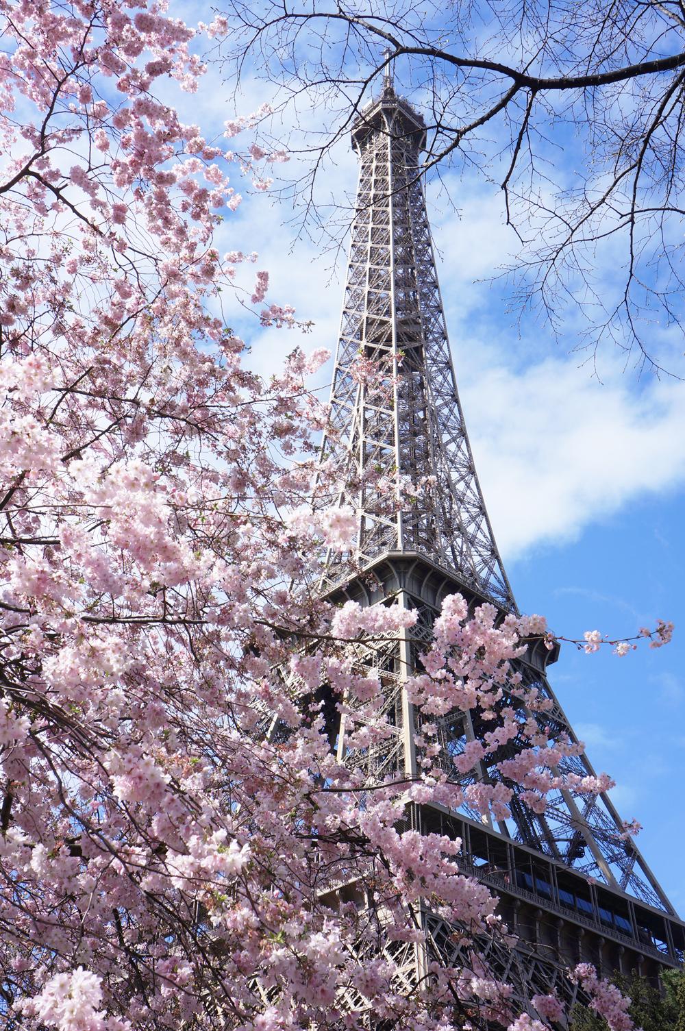 paris-tour-eiffel-tower-8